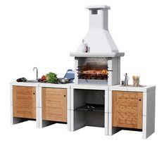 Alimentati a legna, a carbonella, a gas o elettricamente, i barbecue da giardino sono disponibili in diverse forme e attrezzati con numerosi accessori.