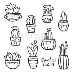 Image result for potted cactus drawing