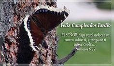 Feliz Cumpleaños Tardío Tarjetas
