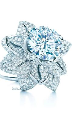 Fashion*Jewellery*Modern | Rosamaria G Frangini || Tiffany & Co Brilliance in Bloom