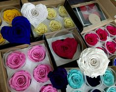 💙 New In 💙 Forever Roses ! New shapes and colours 🤗 Forever Rose, Thessaloniki, Summer Colors, Flower Art, Greece, Roses, Colours, Shapes, In This Moment