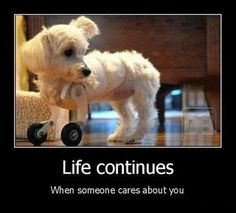 Life continues when someone cares about you.