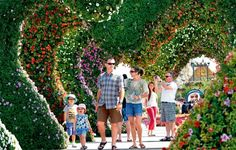 Visitors at Miracle Garden in Dubai greeted by seven heart-shaped hedges