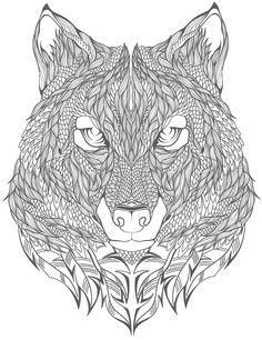 Wolf Zentangle Ausmalbild Mandalas Pinterest