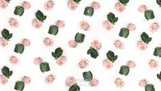 Jana Rose Pattern Design
