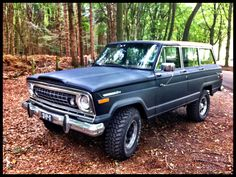 My own jeep Wagoneer 75