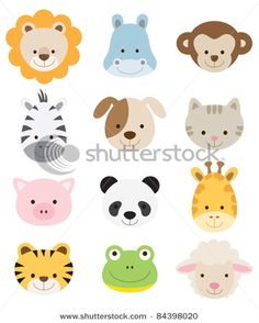 baby animal faces