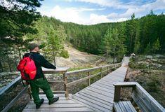 Jääkauden jälkiä | Suomen Luonto Deck, Mountains, Outdoor Decor, Nature, Travel, Geology, Naturaleza, Viajes, Front Porches