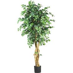 Silk Palace Style 6-foot Ficus Tree   Overstock.com Shopping - Great Deals on Nearly Natural Silk Plants