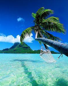 love the water love the trees love the islands loveeeee