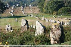 Alignement de Kermario - Carnac - 20101025 47036