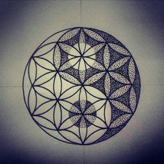 Sacred Geometry University (@sacred_geometry_university) • Instagram photos and videos