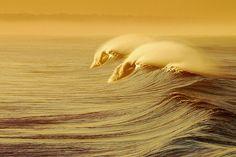 Beach Break (by Phil Gibbs)