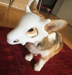 Cubone Cosplay - more at megacutie.co.uk