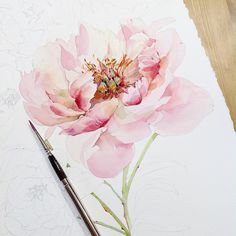 "6,869 Likes, 16 Comments - Watercolor illustrations (@watercolor.illustrations) on Instagram: "" Watercolorist: @katerina_mihailina_07 #waterblog #акварель #aquarelle #painting #drawing #art…"""