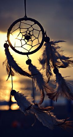 Catch your dreams Dream Catcher Wallpaper Iphone, Iphone Wallpaper, Qhd Wallpaper, Wallpaper Backgrounds, Creative Photography, Nature Photography, Dream Catcher Photography, Moonlight Photography, Dreamcatcher Wallpaper