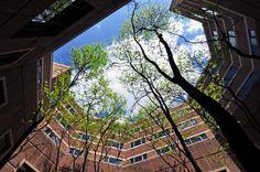 Universidade da Pensilvânia oferece curso grátis de inglês para negócios | Catraca Livre