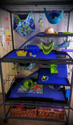 Need this cage for my rats Chinchilla Cage, Ferret Cage, Pet Ferret, Hamster Cages, Pet Rats, Chinchillas, Hamsters, Rodents, Rat Cage Diy