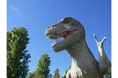 Outdoor Dinosaur Party Games | eHow