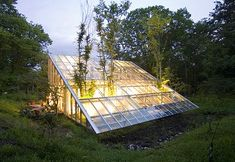 Camouflage House: A Greenhouse Residence | Inhabitat - Green Design, Innovation, Architecture, Green Building