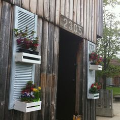 old shutters to use as decoration on the sheds