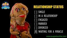 What's your relationship status? #relationshipstatus #funnymemes #meme #joke #oneliner #puppet #funnypuppets http://ift.tt/2mGYExL