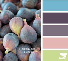 Fig palette from Design Seeds by Scheme Color, Colour Pallette, Colour Schemes, Color Combos, Color Patterns, Purple Palette, Purple Hues, Pink Purple, Design Seeds