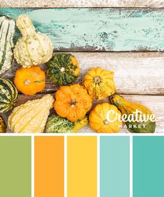 Whether it's for graphic design, fashion or home decor, these 15 color palettes for Fall will guide your hues.