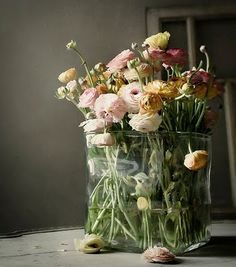 #beautiful ranunculus...