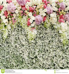 Colorful flowers with green wall for wedding backdrop Stock Photo