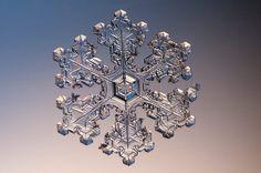 Snowflake   2014 Photomicrography Competition   Nikon Small World