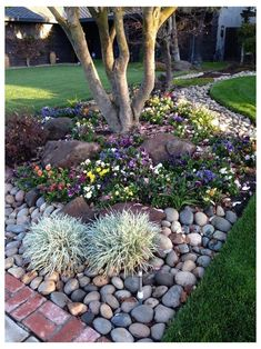 Landscaping With Rocks, Backyard Landscaping, River Rock Landscaping, Gardening With Rocks, Decorative Rock Landscaping, Small Front Yard Landscaping, Budget Landscaping Ideas, Small Front Yards, Stone Backyard