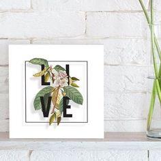 quadro decorativo botanical live