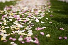 Ideas for aisle flowers!