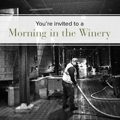 Saturday, January 11  from 10am to noon Trefethen Family Vineyard, Chateau Montelena Winery, St. Supéry Estate Vineyards and Winery - Napa Valley, Peju Winery or Domaine Chandon California to learn about sustainable winery features and winemaking practices.