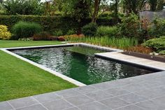La membrana epdm es la impermeabilización ideal para una piscina natural por los 20 años de garantía. En socyr epdm asesoramos para el que quiera disfrutar de una agua sin productos químicos que te deterioran tu piel.Natural swimming pool. Uses a natural water filtration system instead of chlorine. Love the ambience it gives-- useful for the gorgeous look even when the weather is too cold for swimming.Best of Natural Pool