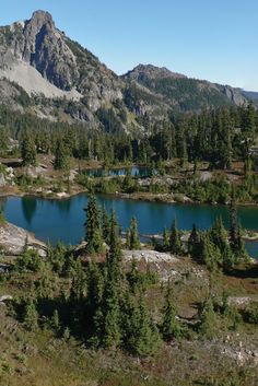 The Evergreen State has some of the most amazing scenery - here's 15 views throughout the state that will take your breath away! Olympia Washington, Washington Usa, Evergreen State, Pacific Northwest, North West, Places To See, Travel Destinations, Things To Do, Waterfall