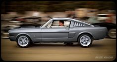 MUSTANG COBRA 1965 love love love!!!!!! wonder if it come in blue...