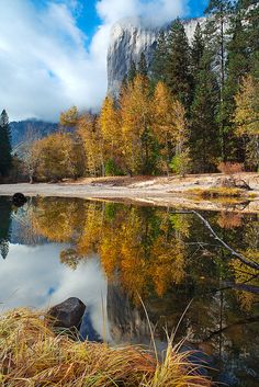 Fall Reflections in Yosemite National Park, photo by .Joe Ganster