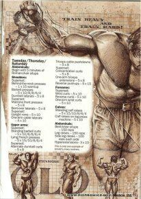 Arnolds workout journal pt4
