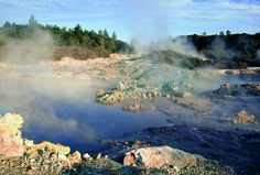 Rotorua geothermal attraction and Rotorua Spa - Hellsgate geothermal park and Mud Bath Spa, accessible from the Port of Rotorua New Zealand, Mud Bath, Last Minute Hotel Deals, New Zealand North, Holiday Destinations, Resort Spa, Waterfall, Island, Attraction