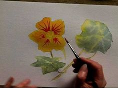 Color Mixing with Sue Deighton Part 1 - YouTube  She does an underpainting of flowers & leaves. Uses yellows, oranges, greens