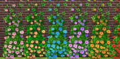 Sims 4 CC's - The Best: Flowers of the Tropics: Hibiscus by Snowhaze