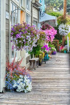 Main St in Coupeville. Step one: win the lottery. Step two: move to Whidbey Island. Step three: live happily everafter.
