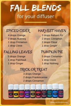 24 Essential Oils to lose Weight Fast Fall Diffuser Blends. Throw away those toxic candles and diffuse essential oils to create those amazing fall scents in your home. They are therapeutic too! # the easiest way to lose weight at home Fall Essential Oils, Helichrysum Essential Oil, Essential Oil Diffuser Blends, Essential Oil Uses, Young Living Essential Oils, Nutmeg Essential Oil Recipe, Best Oil Diffuser, Essential Oil Candles, Oils For Energy