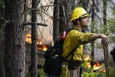 Rim Fire: Did illegal marijuana growers start the blaze? - San Jose Mercury News - Posted PM PDT California History, California Coast, Yosemite National Park, National Parks, Berlin, Grand Jury, Water Conservation, Sierra Nevada, Firefighter