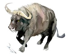 Buy Buffalo, Watercolor by Suren Nersisyan on Artfinder. Discover thousands of other original paintings, prints, sculptures and photography from independent artists. Watercolor Canvas, Watercolor Animals, Watercolor Paintings, Original Paintings, Bird Artwork, Paper Tags, Lovers Art, Pet Birds, Buy Art