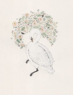 Swan and flowers - by Sarah McNeil Illustrations, Watercolor Illustration, Painting & Drawing, Watercolour Paintings, Les Oeuvres, Art Drawings, Rose Drawings, Street Art, Sketches