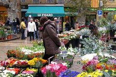 Aix-en-Provence Photos at Frommer's - A flower market vendor in the plaza of Aix-en-Provence