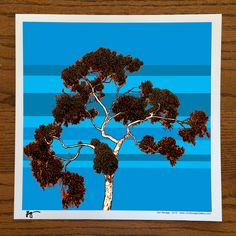 "Gallery: Pop series ""Summer at Balboa Park"" 12 x 12 inch, digital art - Giclee prints on enhanced matte paper. ----------------------------- http://JonSavageGallery.com --------------------------- #art #artist #popart #popartist #contemporary #contemporaryart #digitalart #balboapark #sandiego #california #summer #tree #eucalyptus #eucalyptustree #jonsavagegallery"
